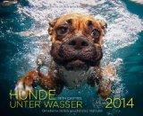Hunde unter Wasser 2014: Wandkalender